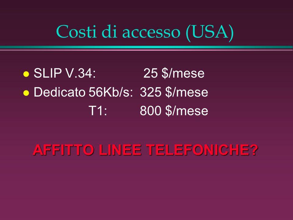 Costi di accesso (USA) l SLIP V.34: 25 $/mese l Dedicato 56Kb/s:325 $/mese T1:800 $/mese AFFITTO LINEE TELEFONICHE