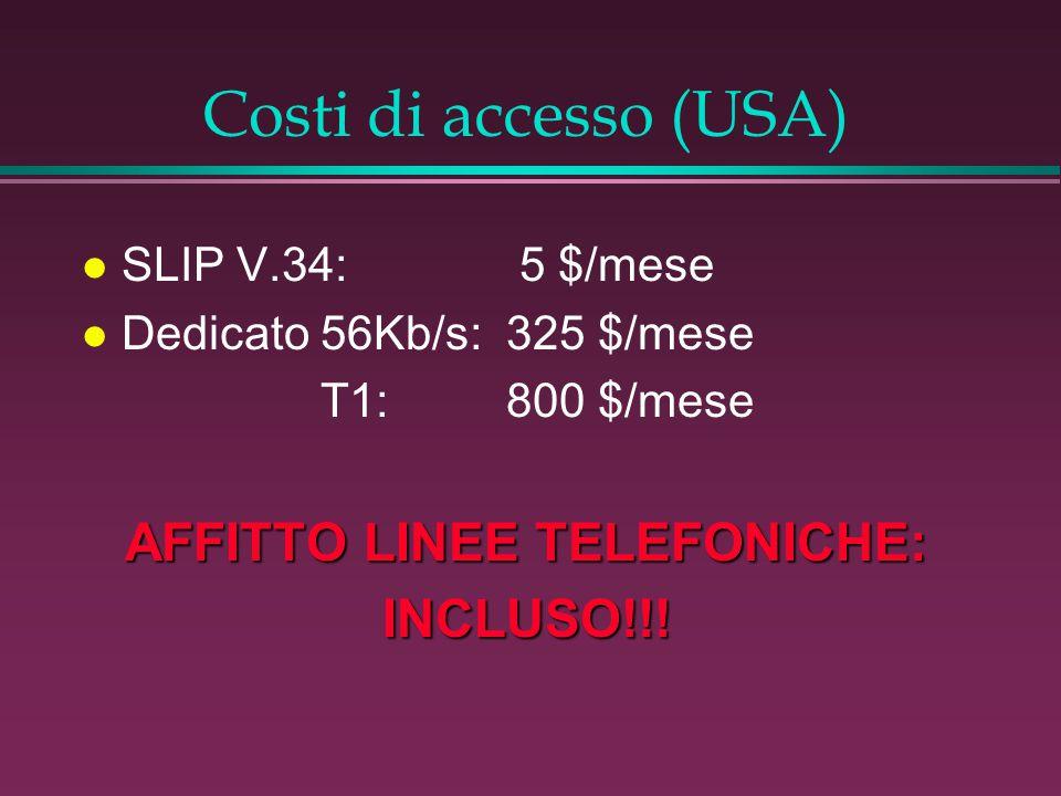 Costi di accesso (USA) l SLIP V.34: 5 $/mese l Dedicato 56Kb/s:325 $/mese T1:800 $/mese AFFITTO LINEE TELEFONICHE: INCLUSO!!!