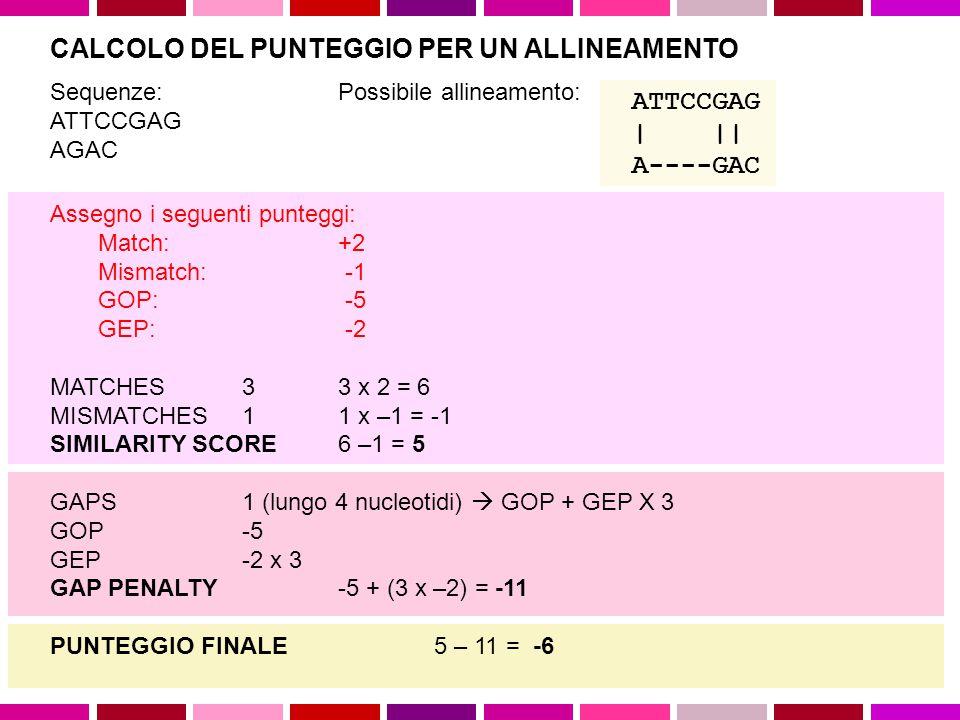 GAP PENALTY SIMILARITY SCORE MATCHES MISMATCHES GAPS CALCOLO DEL PUNTEGGIO PER UN ALLINEAMENTO Data una coppia di sequenze Sa e Sb Per ogni coppia di elementi a i e b j di Sa e Sb si definisce un punteggio s(a i,b j ) s(a i,b j ) =  se a i = b j s(a i,b j ) =  se a i  b j, con  >  Ad ogni ogni gap viene assegnato un punteggio dato da: W k =  +  (k-1) Dove W k e' una funzione lineare che assegna una penalita' constante alla presenza del gap ( , ad es.