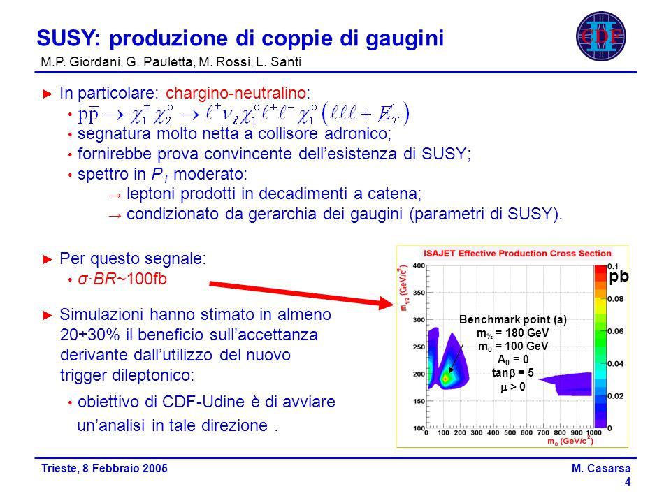 Trieste, 8 Febbraio 2005M.Casarsa 4 SUSY: produzione di coppie di gaugini M.P.