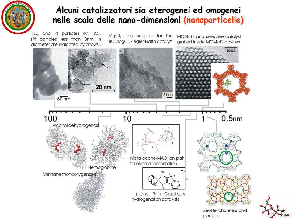 Alcuni catalizzatori sia eterogenei ed omogenei nelle scala delle nano-dimensioni (nanoparticelle)