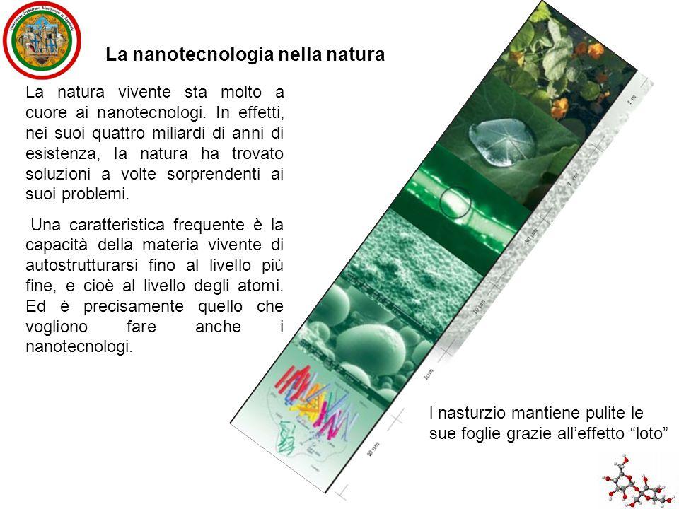 La natura vivente sta molto a cuore ai nanotecnologi. In effetti, nei suoi quattro miliardi di anni di esistenza, la natura ha trovato soluzioni a vol