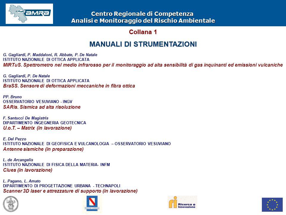 Centro Regionale di Competenza Analisi e Monitoraggio del Rischio Ambientale G.