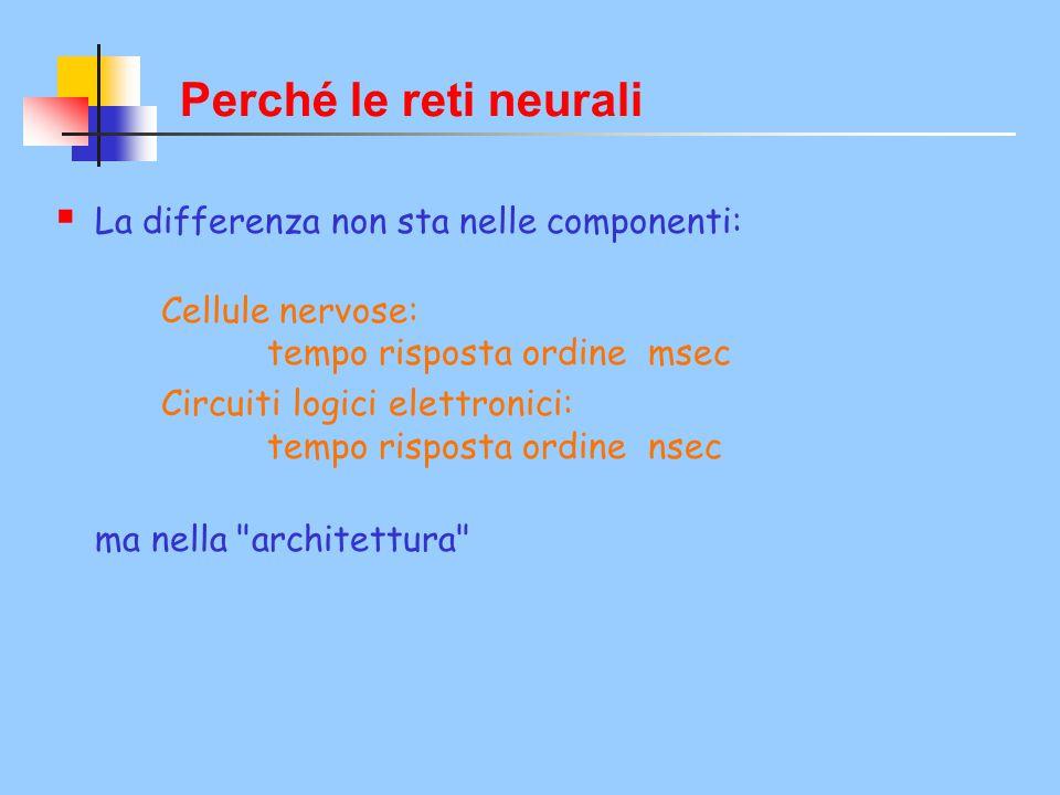  La differenza non sta nelle componenti: Cellule nervose: tempo risposta ordine msec Circuiti logici elettronici: tempo risposta ordine nsec ma nella