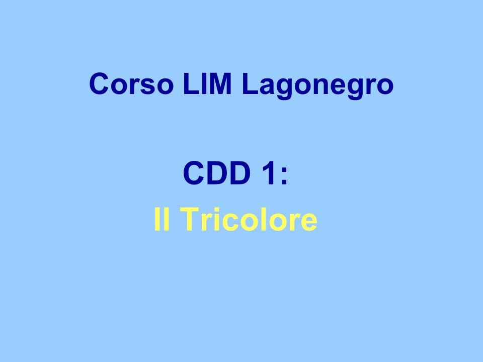 Corso LIM Lagonegro CDD 1: Il Tricolore