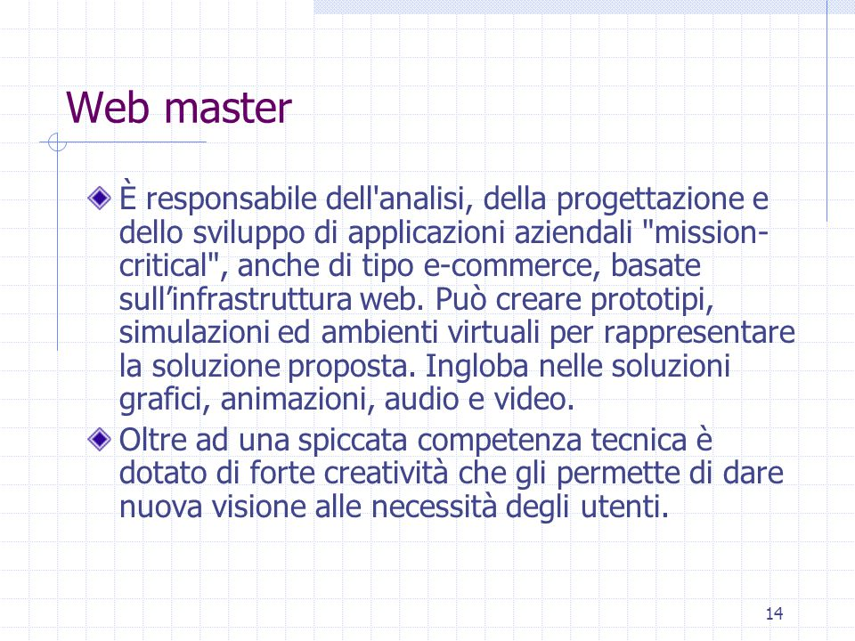 14 Web master È responsabile dell analisi, della progettazione e dello sviluppo di applicazioni aziendali mission- critical , anche di tipo e-commerce, basate sull'infrastruttura web.