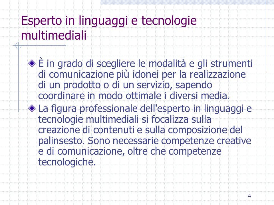 4 Esperto in linguaggi e tecnologie multimediali È in grado di scegliere le modalità e gli strumenti di comunicazione più idonei per la realizzazione di un prodotto o di un servizio, sapendo coordinare in modo ottimale i diversi media.