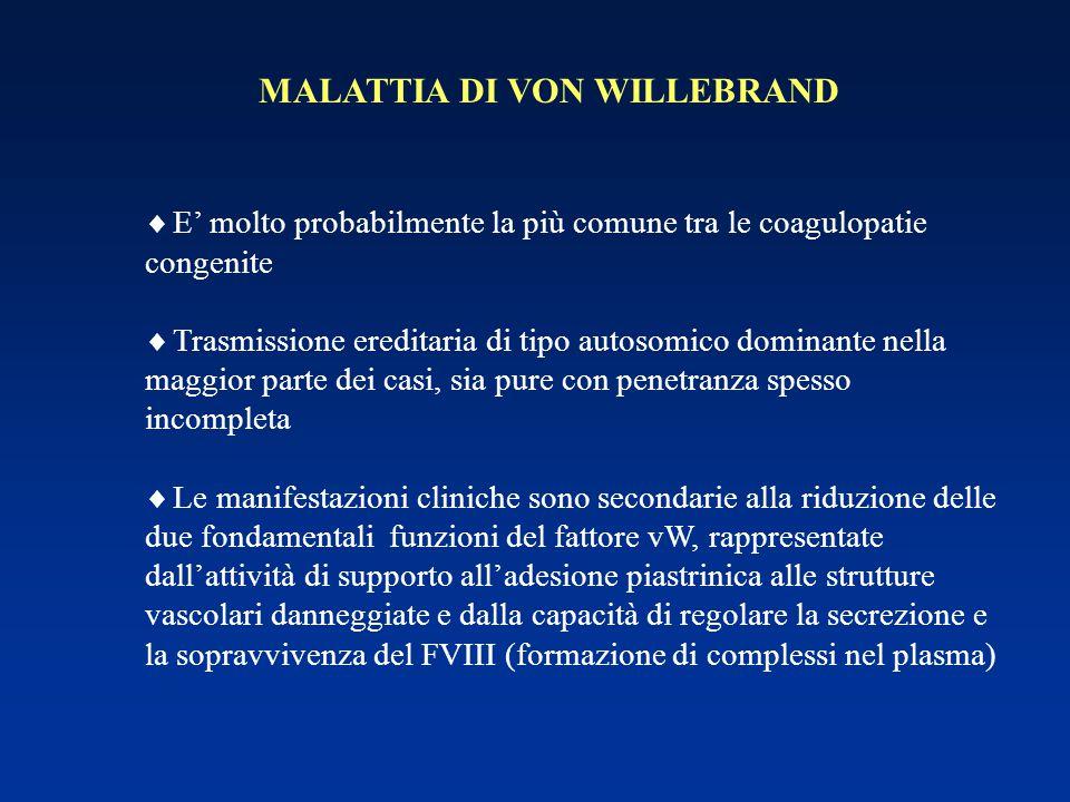 MALATTIA DI VON WILLEBRAND  E' molto probabilmente la più comune tra le coagulopatie congenite  Trasmissione ereditaria di tipo autosomico dominante