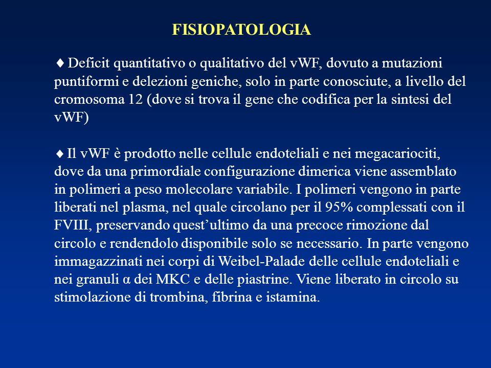 FISIOPATOLOGIA  Deficit quantitativo o qualitativo del vWF, dovuto a mutazioni puntiformi e delezioni geniche, solo in parte conosciute, a livello de
