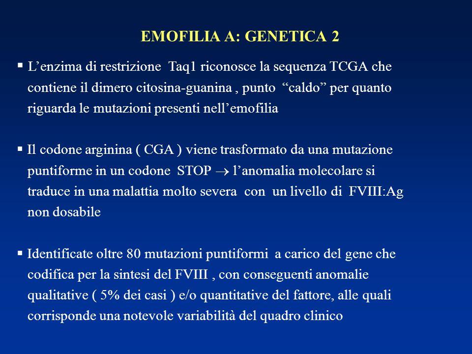 """EMOFILIA A: GENETICA 2  L'enzima di restrizione Taq1 riconosce la sequenza TCGA che contiene il dimero citosina-guanina, punto """"caldo"""" per quanto rig"""