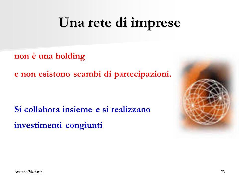 Antonio Ricciardi73 Una rete di imprese non è una holding e non esistono scambi di partecipazioni.