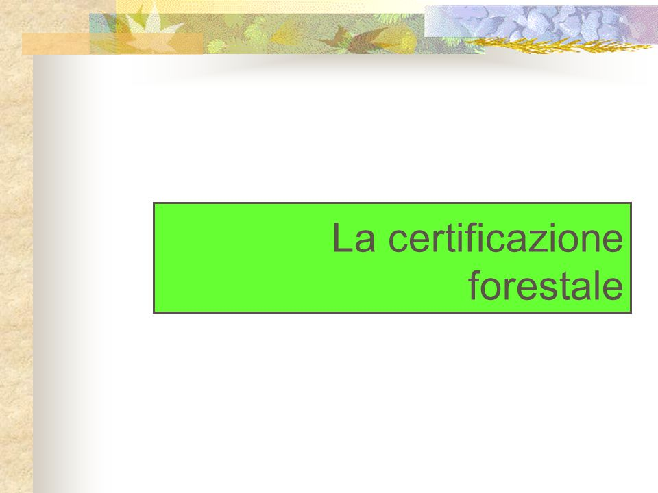 La situazione in Italia PEFC Interventi operativi di certificazione Lo schema non è ancora operativo.