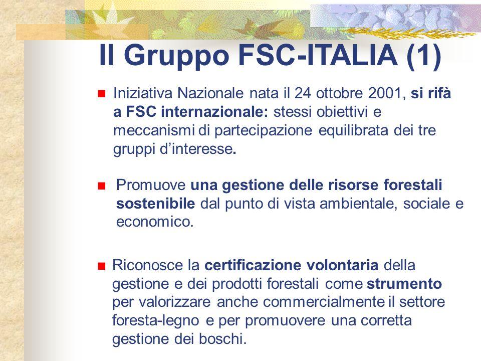 Il Gruppo FSC-ITALIA (1) Iniziativa Nazionale nata il 24 ottobre 2001, si rifà a FSC internazionale: stessi obiettivi e meccanismi di partecipazione e
