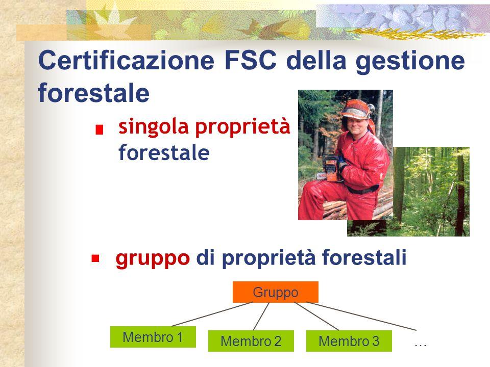 Certificazione FSC della gestione forestale gruppo di proprietà forestali Gruppo Membro 1 Membro 2Membro 3… singola proprietà forestale