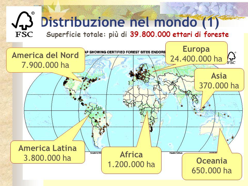 Superficie totale: più di 39.800.000 ettari di foreste Distribuzione nel mondo (1) Europa 24.400.000 ha America Latina 3.800.000 ha Africa 1.200.000 h