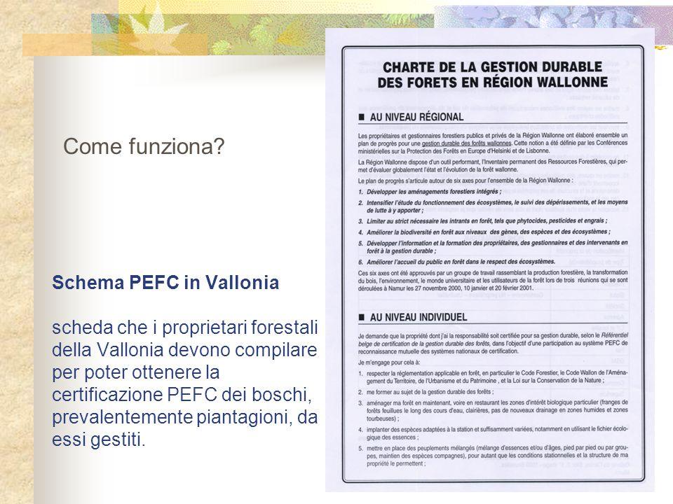 Schema PEFC in Vallonia scheda che i proprietari forestali della Vallonia devono compilare per poter ottenere la certificazione PEFC dei boschi, preva