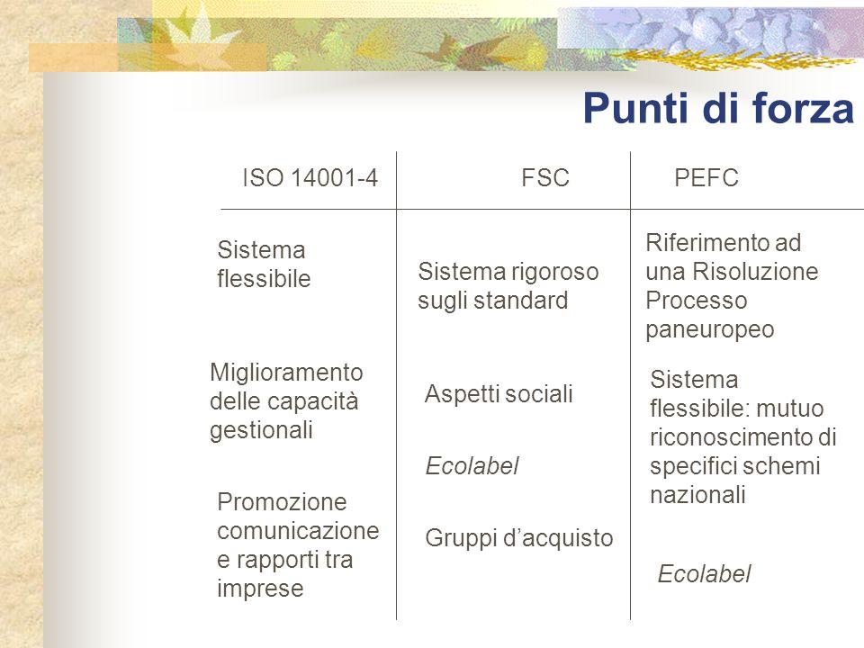 Punti di forza ISO 14001-4 FSCPEFC Sistema flessibile Miglioramento delle capacità gestionali Promozione comunicazione e rapporti tra imprese Sistema
