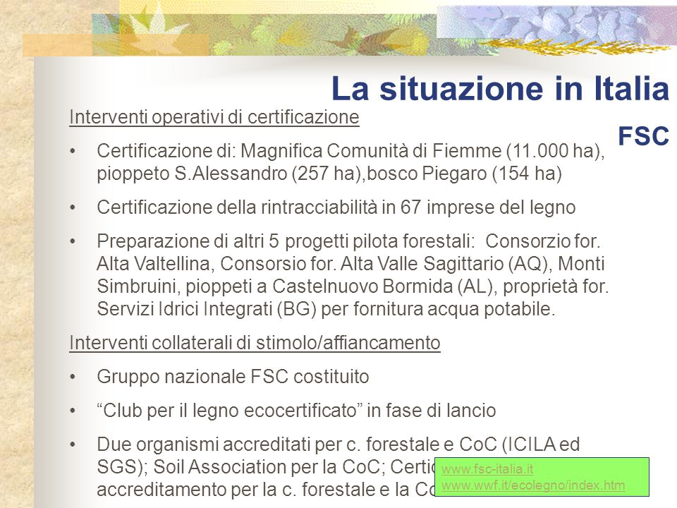 La situazione in Italia FSC Interventi operativi di certificazione Certificazione di: Magnifica Comunità di Fiemme (11.000 ha), pioppeto S.Alessandro