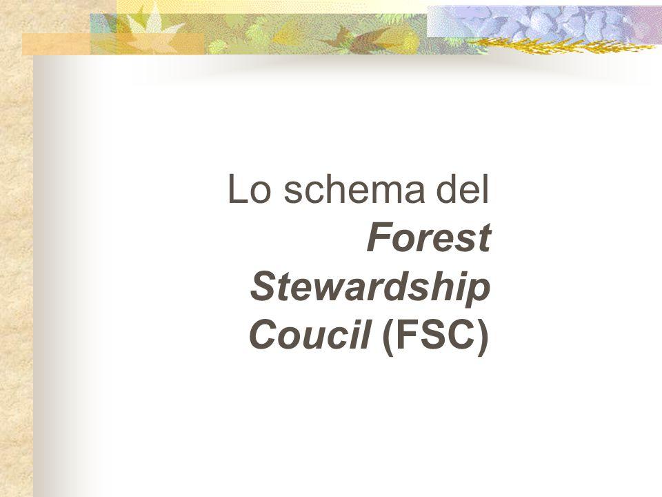 Il network internazionale 19 gruppi d'acquisto (coordinati nel Global Forest and Trade Network- GFTN; 700 aziende; controllano circa il 7% della produzione industriale di legno del mondo; in Italia è il Club per il legno ecocertificato del WWF-Italia) 12 Enti accreditati (tra cui l'ente italiano ICILA – Istituto di Certificaz.
