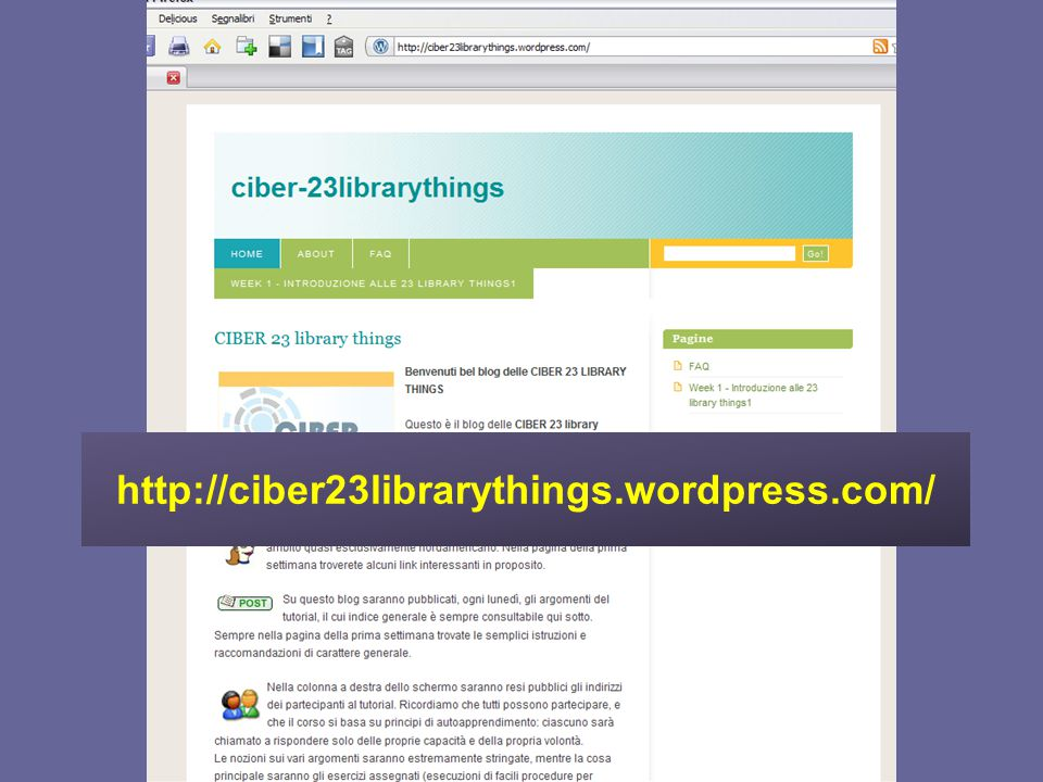 http://ciber23librarythings.wordpress.com/