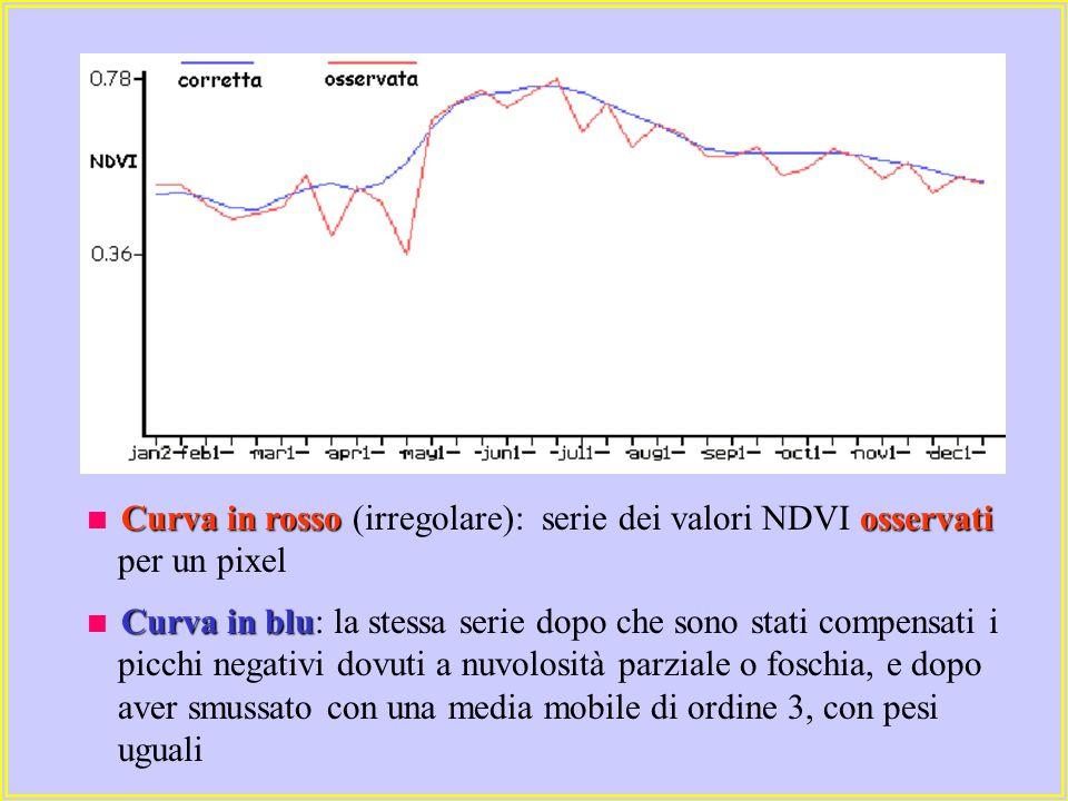 Curva in rossoosservati  Curva in rosso (irregolare): serie dei valori NDVI osservati per un pixel Curva in blu  Curva in blu: la stessa serie dopo che sono stati compensati i picchi negativi dovuti a nuvolosità parziale o foschia, e dopo aver smussato con una media mobile di ordine 3, con pesi uguali