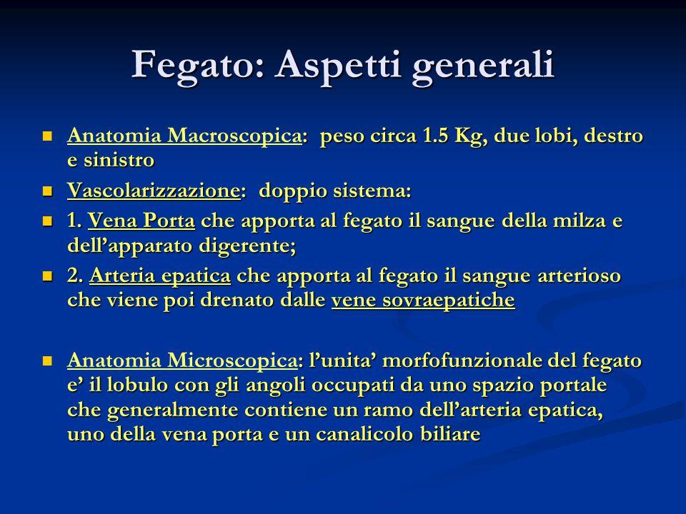 Ammoniemia (1) Parametro di alterato metabolismo proteico.