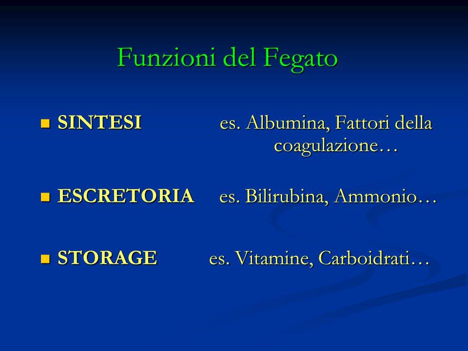 Albumina Sintetizzata dalle cellule parenchimali del fegato, vita media 20 giorni, responsabile della pressione ancotica 8oltre 80%), trasporta numerose sostanze (bilirubina, ormoni, calcio, farmaci).