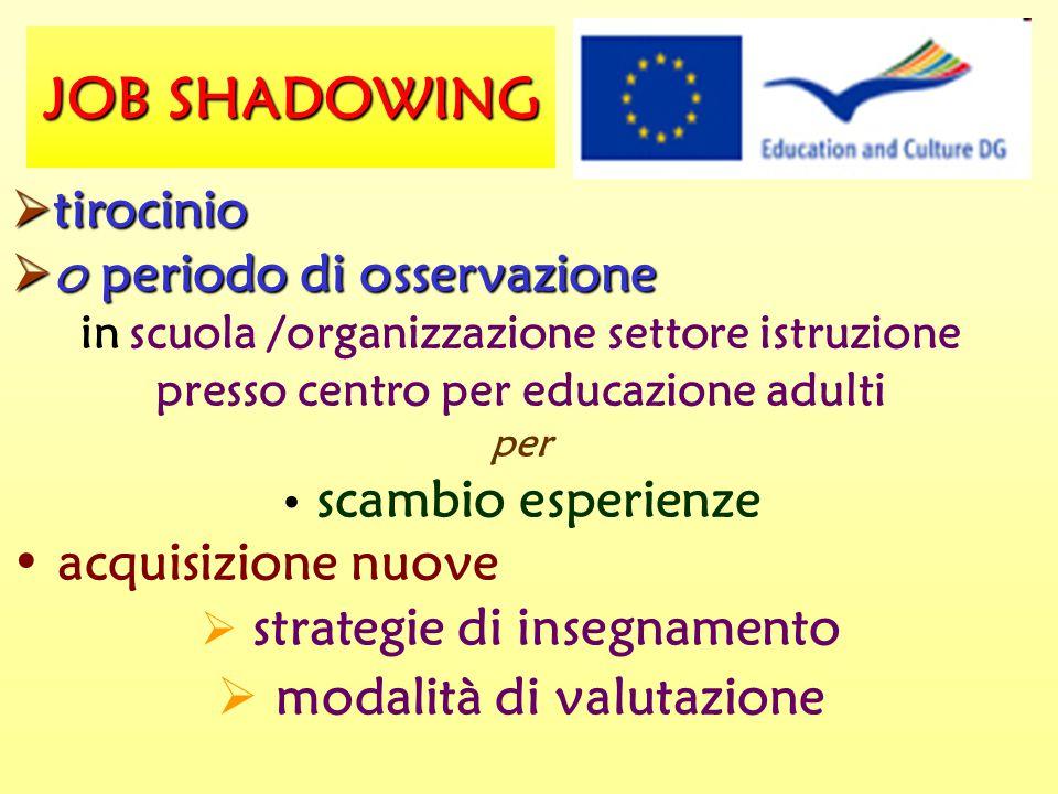 JOB SHADOWING  tirocinio  o periodo di osservazione in scuola /organizzazione settore istruzione presso centro per educazione adulti per scambio esperienze acquisizione nuove  strategie di insegnamento  modalità di valutazione