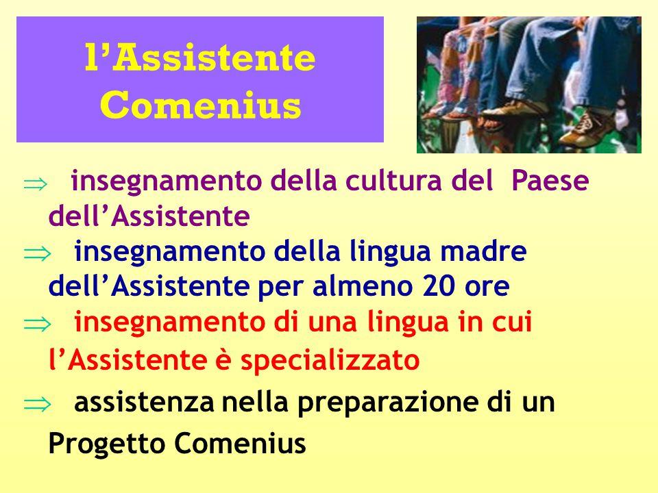 l'Assistente Comenius  insegnamento della cultura del Paese dell'Assistente  insegnamento della lingua madre dell'Assistente per almeno 20 ore  insegnamento di una lingua in cui l'Assistente è specializzato  assistenza nella preparazione di un Progetto Comenius