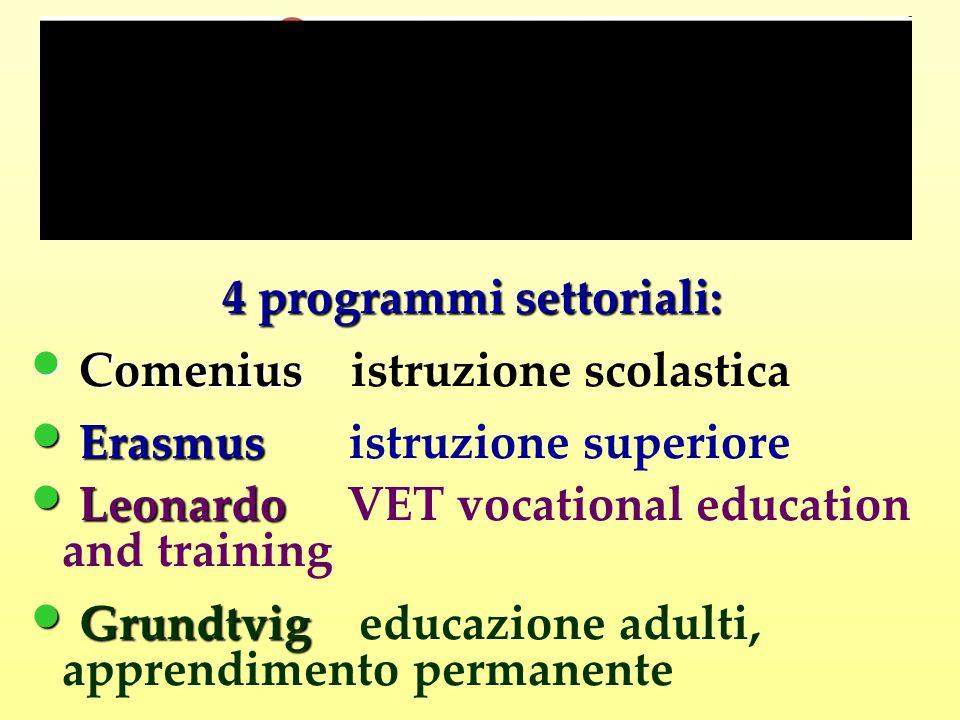 4 programmi settoriali: Comenius Comenius istruzione scolastica Erasmus Erasmus istruzione superiore Leonardo Leonardo VET vocational education and training Grundtvig Grundtvig educazione adulti, apprendimento permanente