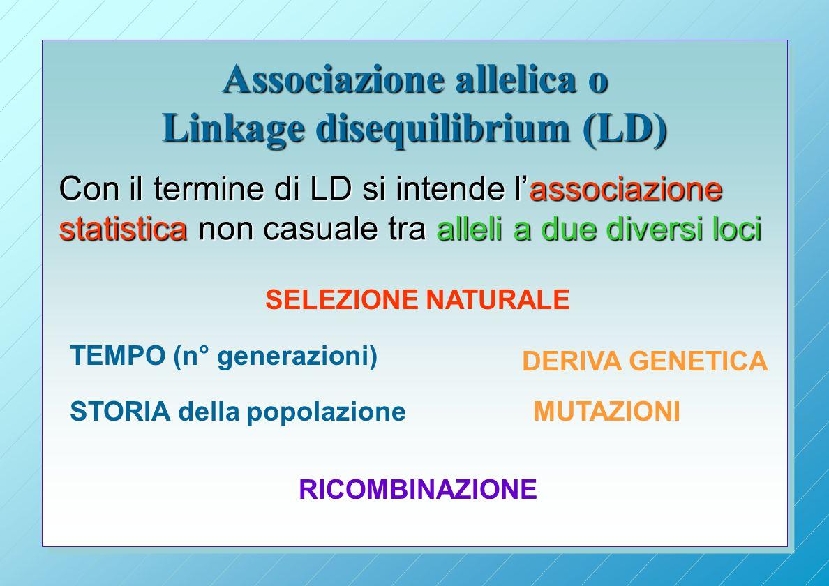 Associazione allelica o Linkage disequilibrium (LD) Con il termine di LD si intende l'associazione statistica non casuale tra alleli a due diversi loci RICOMBINAZIONE TEMPO (n° generazioni) STORIA della popolazione DERIVA GENETICA SELEZIONE NATURALE MUTAZIONI
