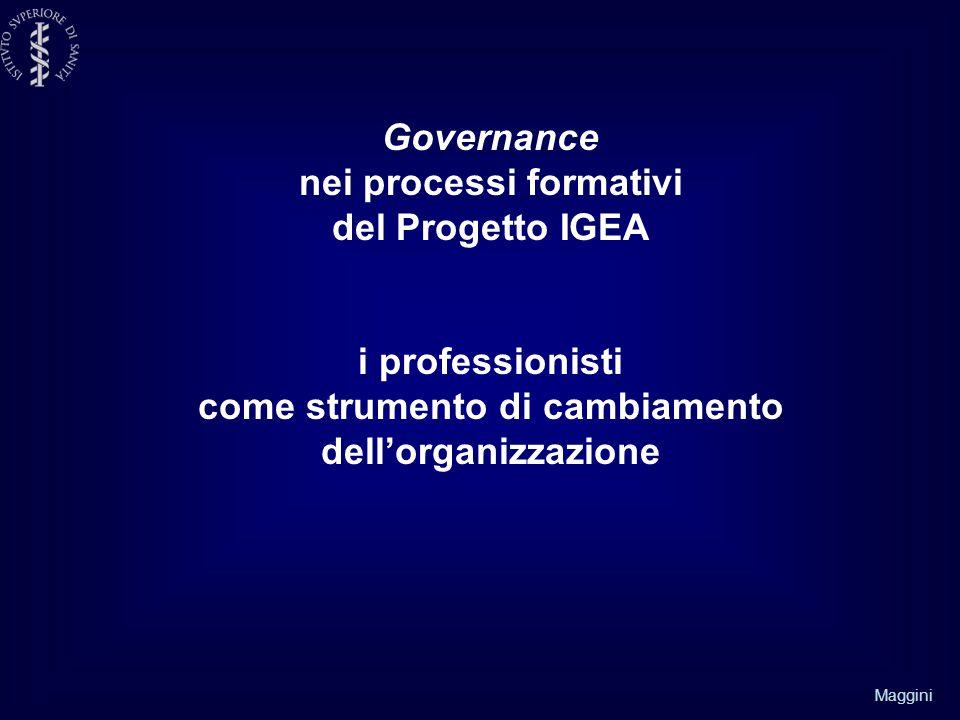 Maggini Governance nei processi formativi del Progetto IGEA i professionisti come strumento di cambiamento dell'organizzazione