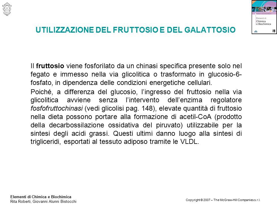 Elementi di Chimica e Biochimica Rita Roberti, Giovanni Alunni Bistocchi Copyright © 2007 – The McGraw-Hill Companies s.r.l. UTILIZZAZIONE DEL FRUTTOS