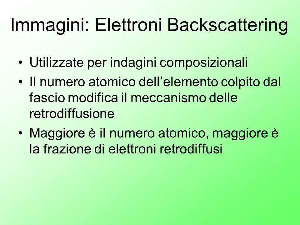 Immagini: Elettroni Backscattering Utilizzate per indagini composizionali Il numero atomico dell'elemento colpito dal fascio modifica il meccanismo de