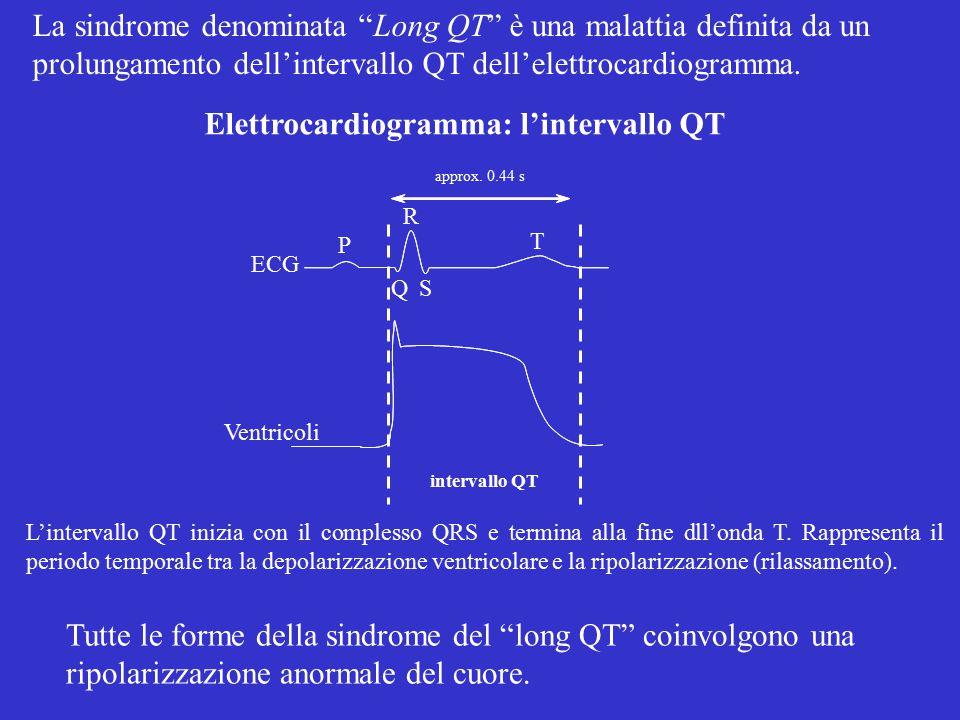 Canali ionici nel miocita ventricolare V m del miocita ventricolare (mV) -50 0 200 msec Canali del K inattivanti (K A ) Canali del K rapidi (I Kr /hERG) Canali del K lenti (I Ks ) I K1 Canali del Na VD Canali del K ultra-rapidi (I Kur ) Canali del Ca VD