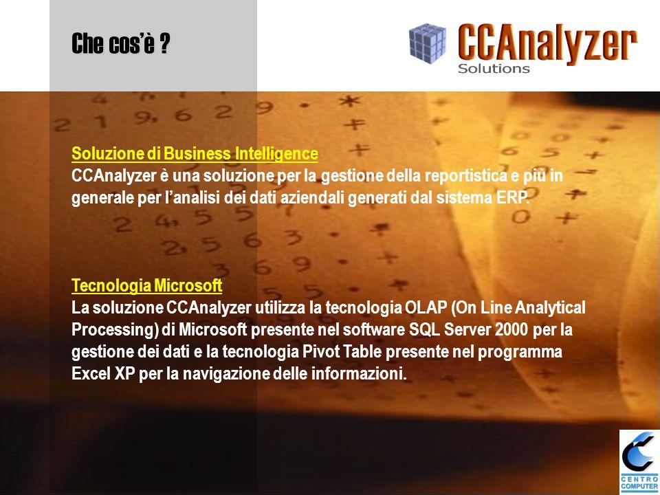 Tecnologia Microsoft La soluzione CCAnalyzer utilizza la tecnologia OLAP (On Line Analytical Processing) di Microsoft presente nel software SQL Server 2000 per la gestione dei dati e la tecnologia Pivot Table presente nel programma Excel XP per la navigazione delle informazioni.