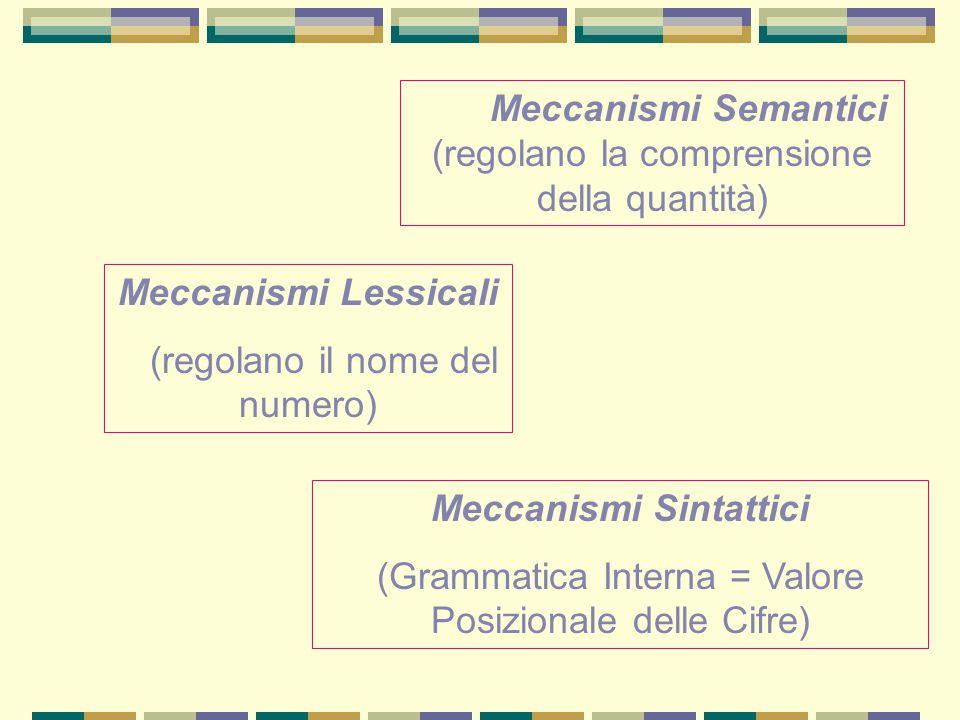 Meccanismi Semantici (regolano la comprensione della quantità) Meccanismi Lessicali (regolano il nome del numero) Meccanismi Sintattici (Grammatica In