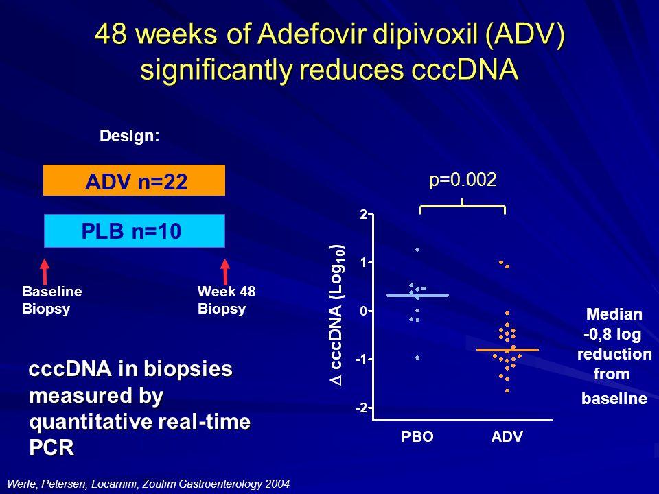 48 weeks of Adefovir dipivoxil (ADV) significantly reduces cccDNA Baseline Biopsy Week 48 Biopsy ADV n=22 PLB n=10 Design: cccDNA in biopsies measured