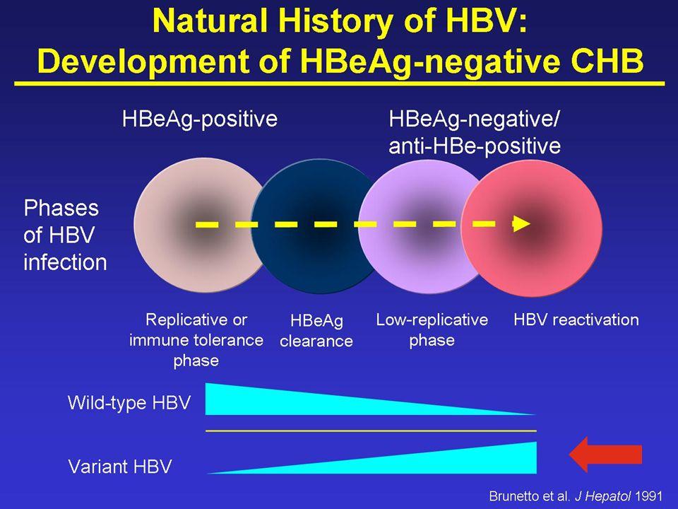 0 10 20 30 40 50 60 70 80 HBV DNA -ve, ALT Normal Responders HBV DNA -ve, ALT elevated Partial responders HBV DNA and ALT elevated Non-responders Patients (%) 65% 7% 28% Missing Data Tassopoulos et al.