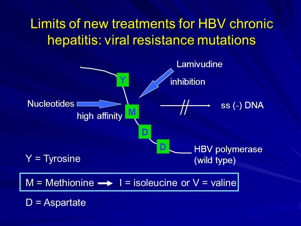 Nucleotides Lamivudine ss (-) DNA inhibition HBV polymerase (wild type) high affinity M D Y D Y = Tyrosine M = Methionine I = isoleucine or V = valine