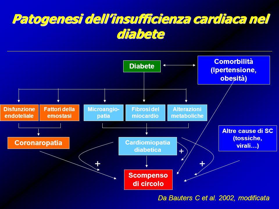 Patogenesi dell'insufficienza cardiaca nel diabete Diabete Comorbilità (Ipertensione, obesità) Disfunzione endoteliale Fattori della emostasi Microangio- patia Fibrosi del miocardio Alterazioni metaboliche Coronaropatia Cardiomiopatia diabetica Altre cause di SC (tossiche, virali…) Scompenso di circolo ++ + Da Bauters C et al.