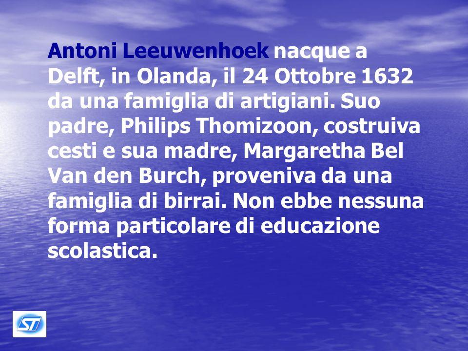 Il vero inventore del microscopio ottico può essere considerato Antoni van Leeuwenhoek (1632 – 1723)