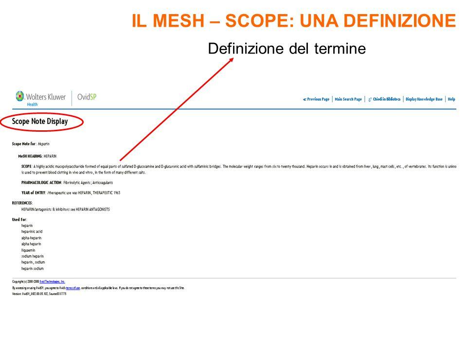 Definizione del termine IL MESH – SCOPE: UNA DEFINIZIONE