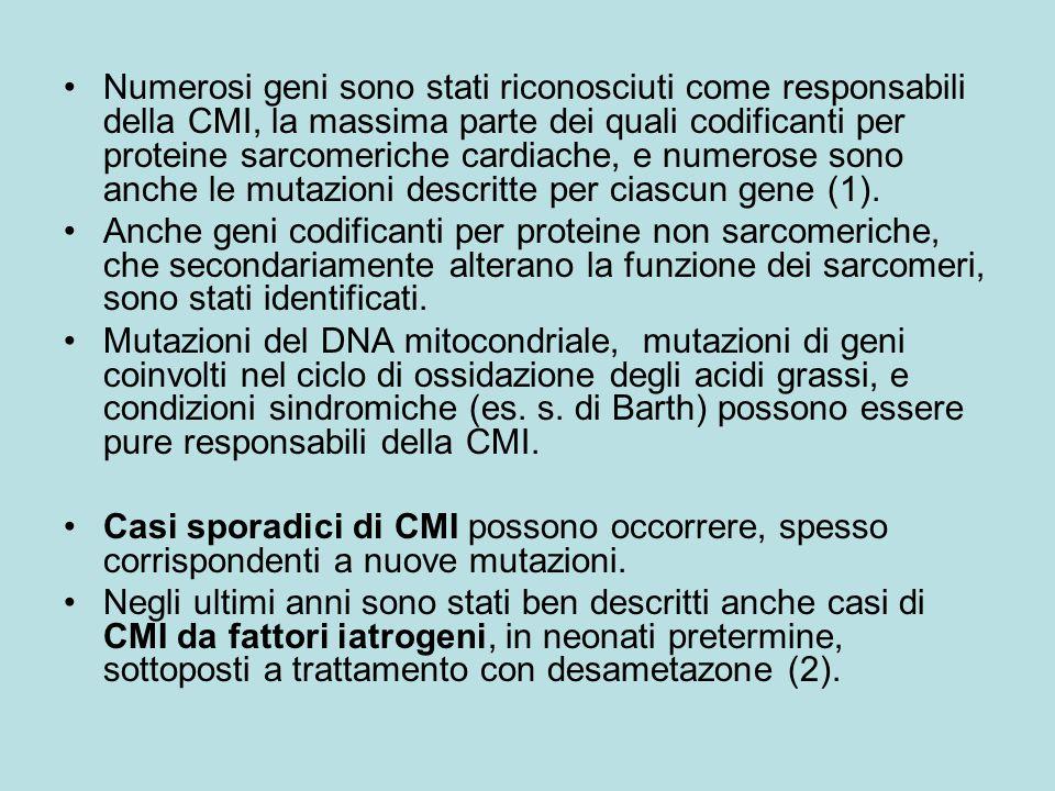 Numerosi geni sono stati riconosciuti come responsabili della CMI, la massima parte dei quali codificanti per proteine sarcomeriche cardiache, e numer