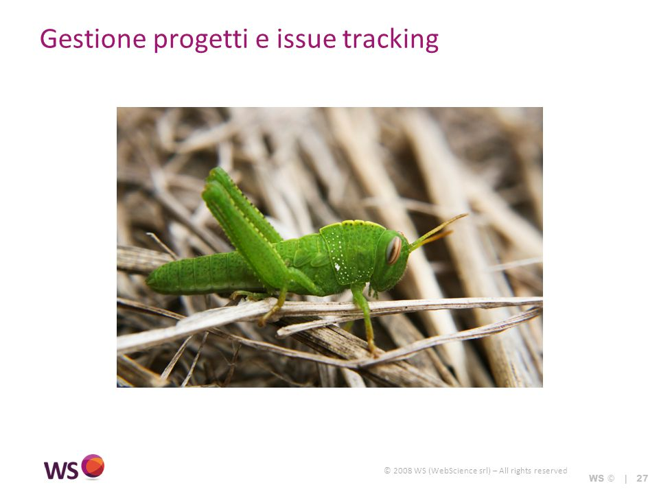 © 2008 WS (WebScience srl) – All rights reserved WS © | 27 Gestione progetti e issue tracking