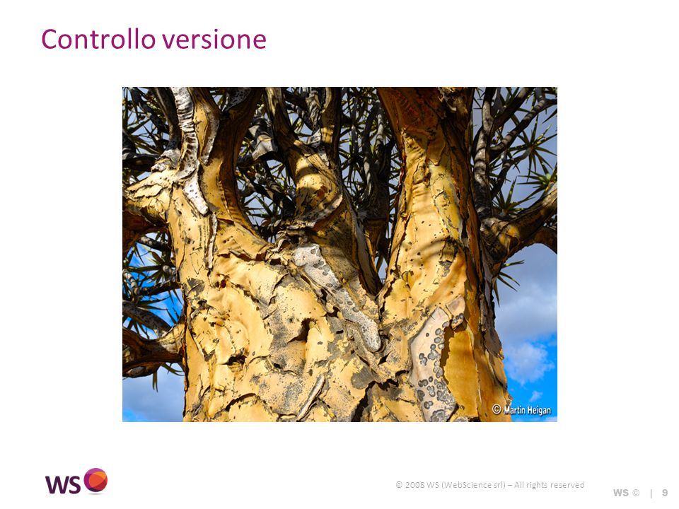 © 2008 WS (WebScience srl) – All rights reserved WS © | 9 Controllo versione