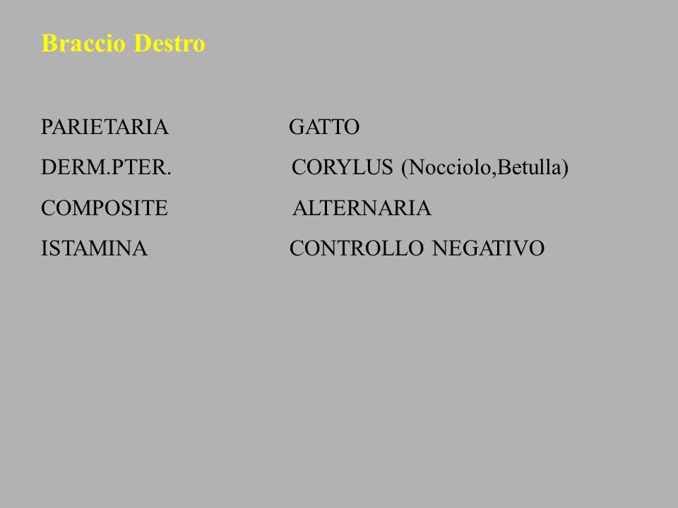 Braccio Destro PARIETARIA GATTO DERM.PTER. CORYLUS (Nocciolo,Betulla) COMPOSITE ALTERNARIA ISTAMINA CONTROLLO NEGATIVO