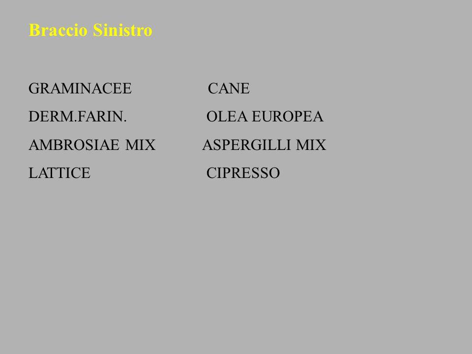 Braccio Sinistro GRAMINACEE CANE DERM.FARIN. OLEA EUROPEA AMBROSIAE MIX ASPERGILLI MIX LATTICE CIPRESSO