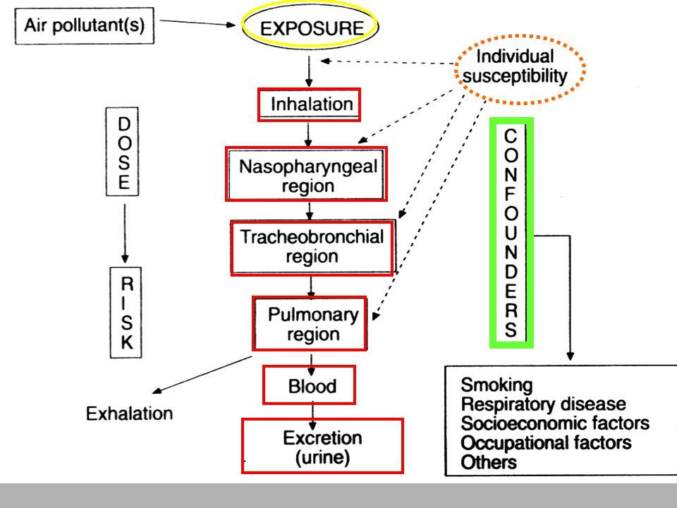RINOSINUSITE (E POLIPOSI): Patologia infiammatoria del naso e seni paranasali.