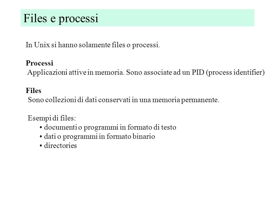 Files e processi In Unix si hanno solamente files o processi.